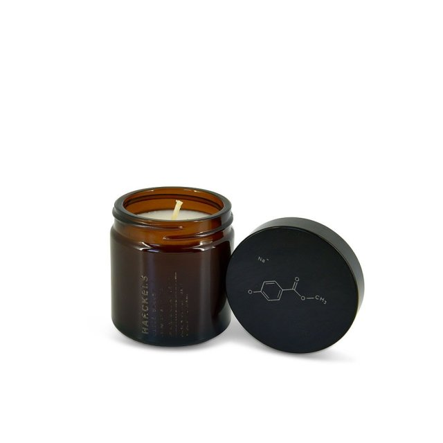 haeckels-candle_1024x1024